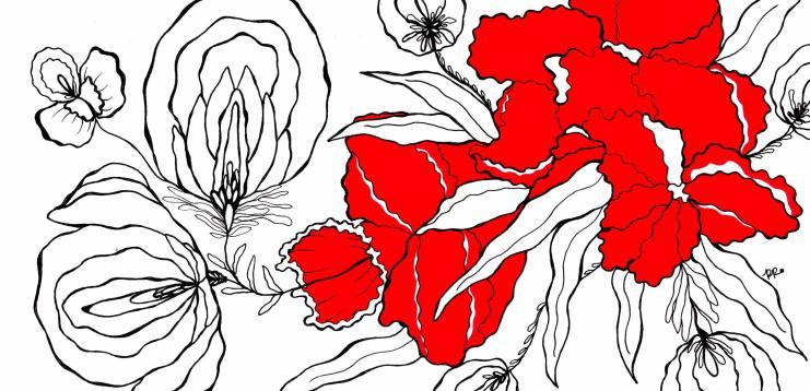 flores em vermelho e branco